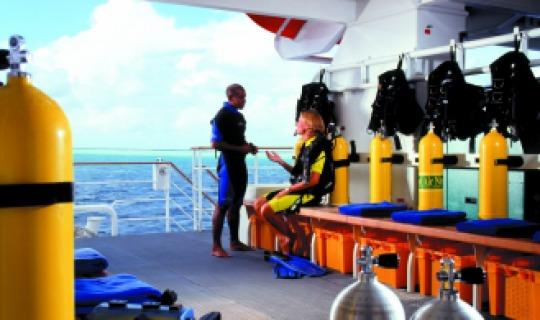 Erleben Sie die Unterwasserwelt