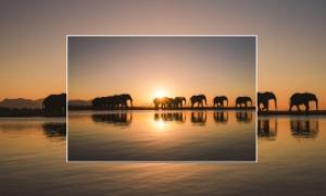 Jabulani-Elephant-Workshop-Image5.jpg