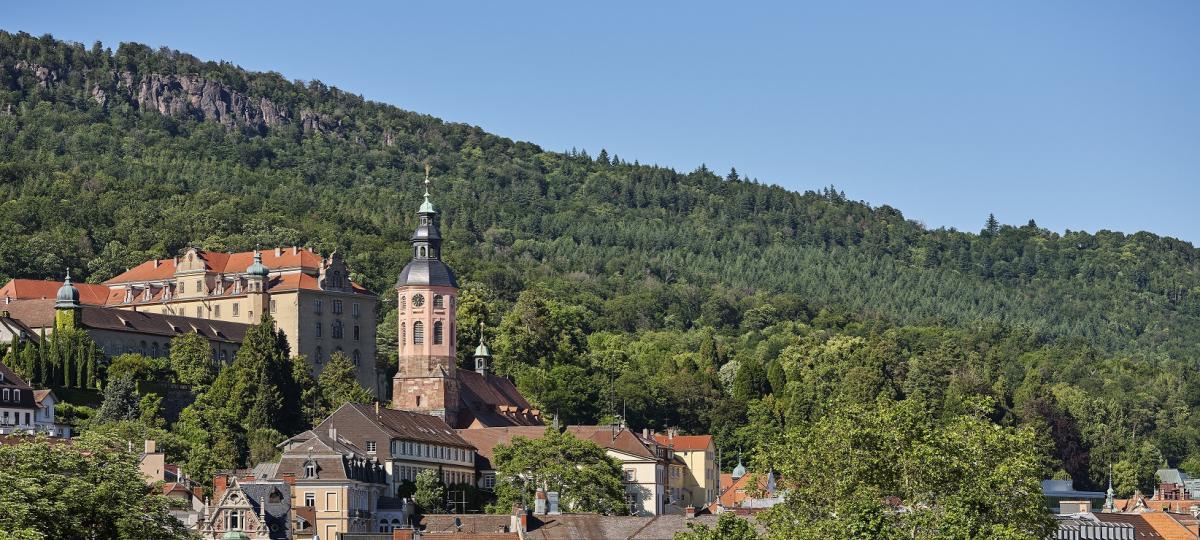 Ihre Aussicht über Baden Baden