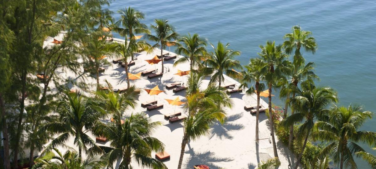 Traumhafte Palmen am schneeweißen Strand