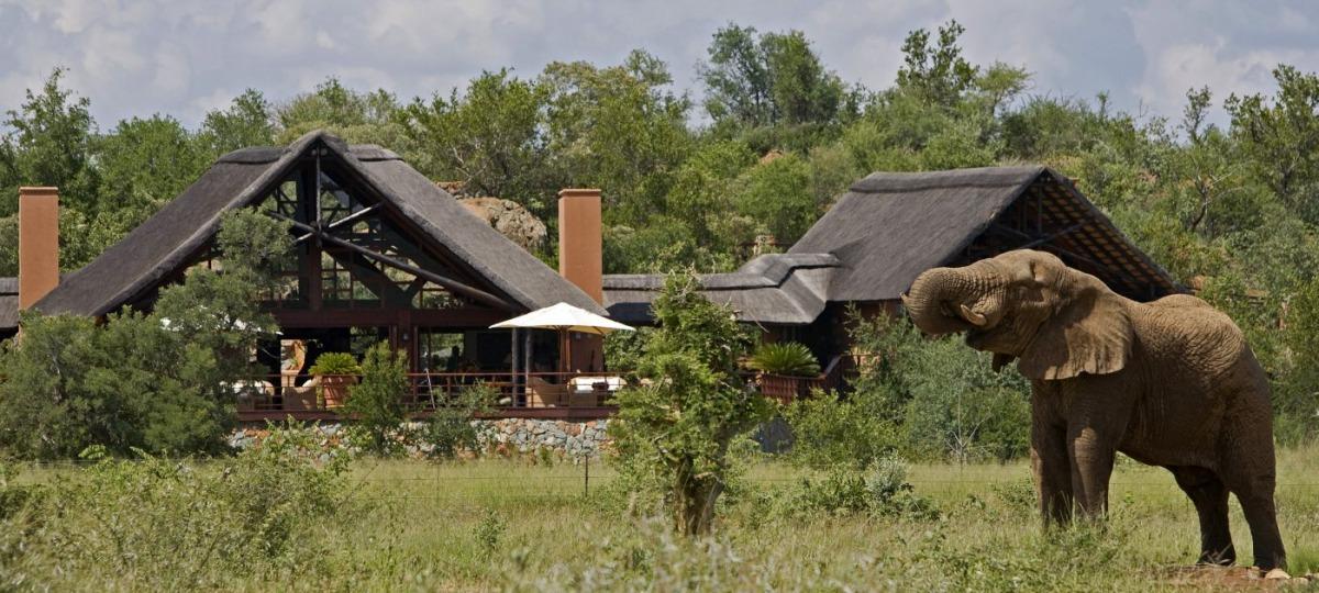 Herzlich Willkommen in der Mateya Safari Lodge