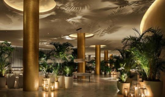 Tropical feeling in der Lobby