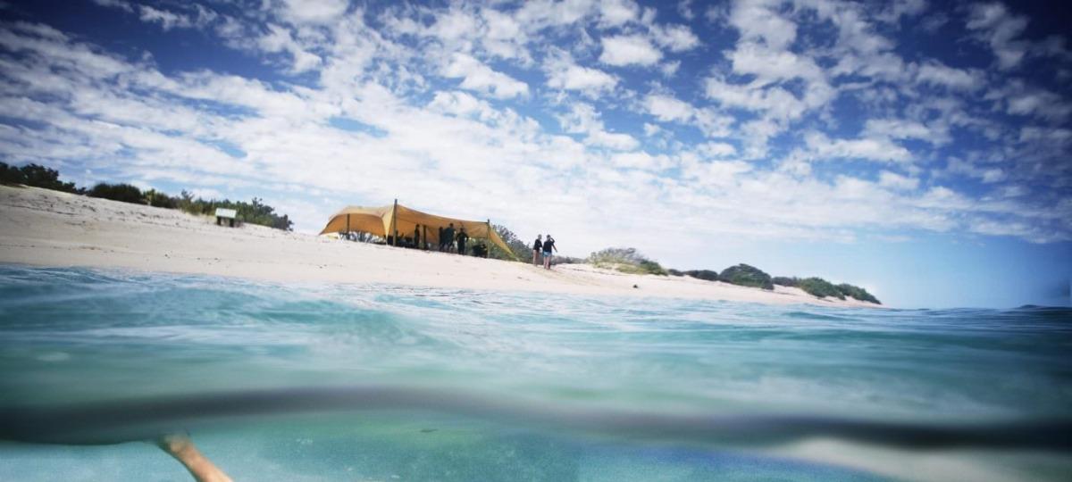 Die Unterwasserwelt entdecken