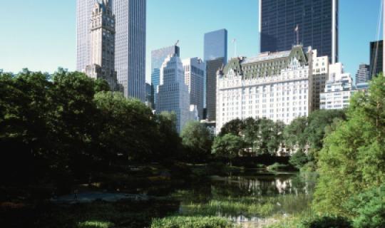 Herzlich Willkommen im The Plaza New York!