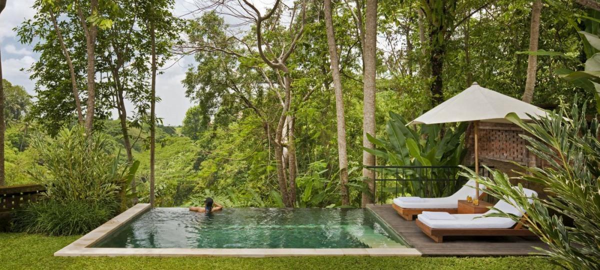 Eine grüne Oase inmitten des Dschungels