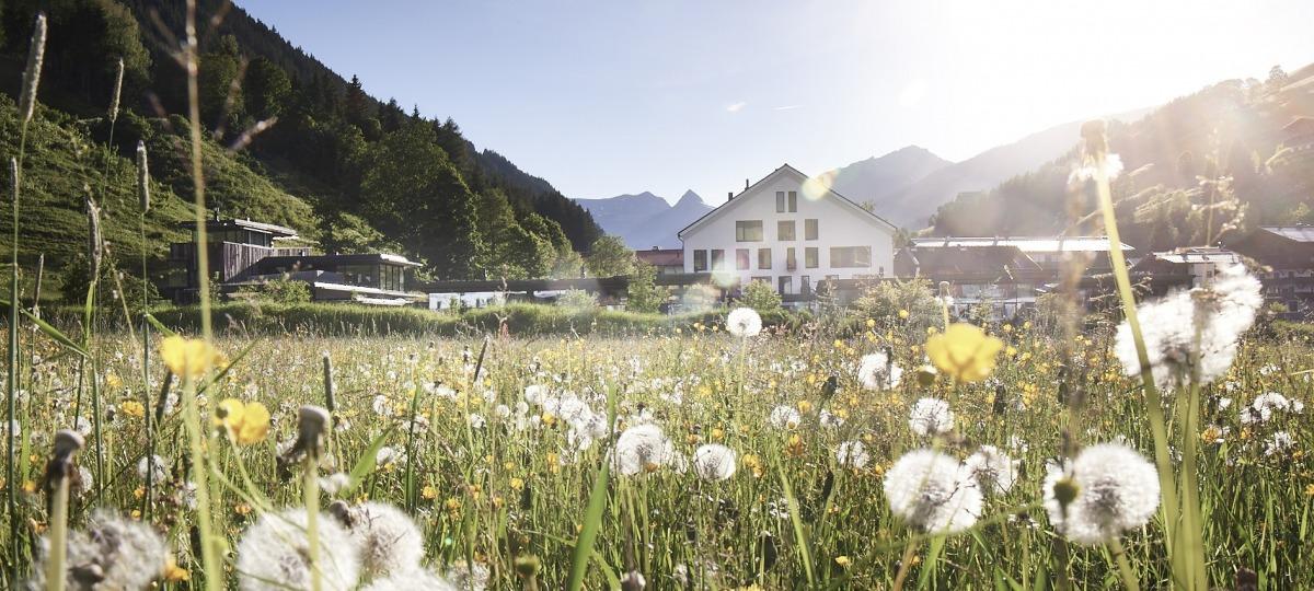 Der wunderschöne Wieserhof im Sommer