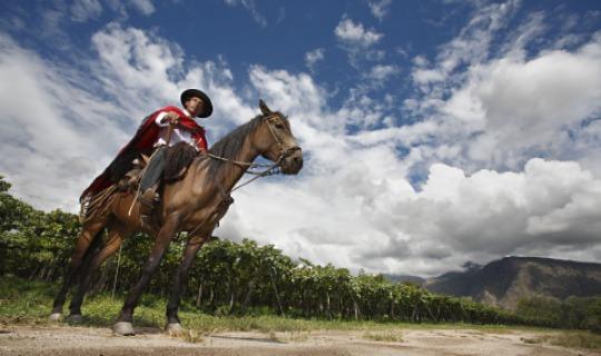 Gaucho mit seinem Pferd