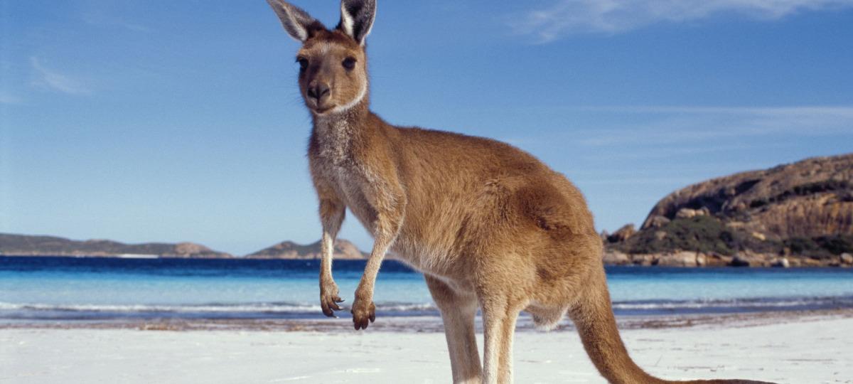 Herzlich Willkommen in Australien