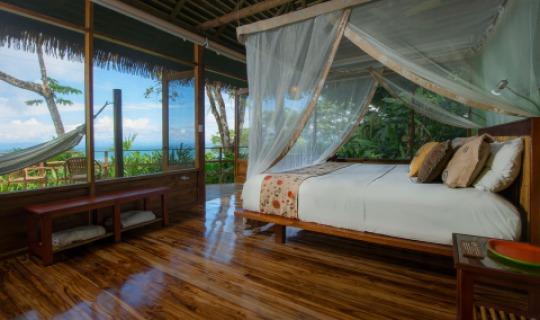Dschungel Bungalows mit wunderschöner Aussicht
