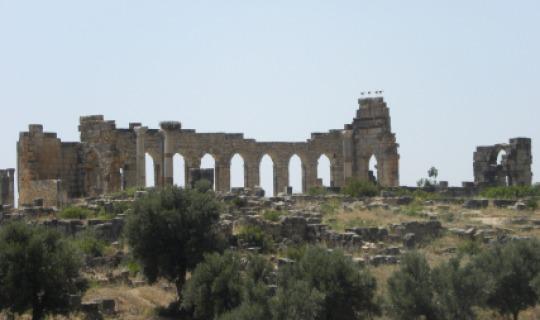Die Ruinen von Volubilis