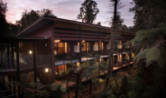Das Te Waonui Forest Retreat