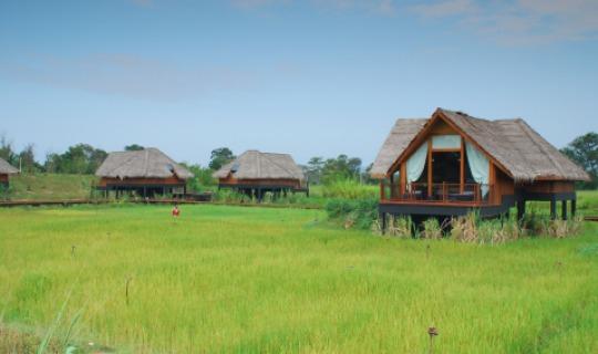 Herzlich Willkommen im Vil Uyana