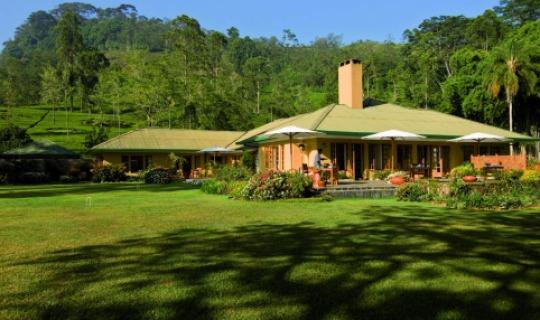 Herzlich Willkommen im Tea Trails