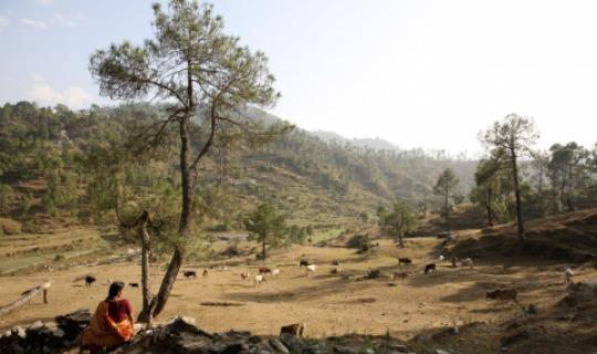 Einheimische Bergbewohner bei der alltäglichen Arbeit